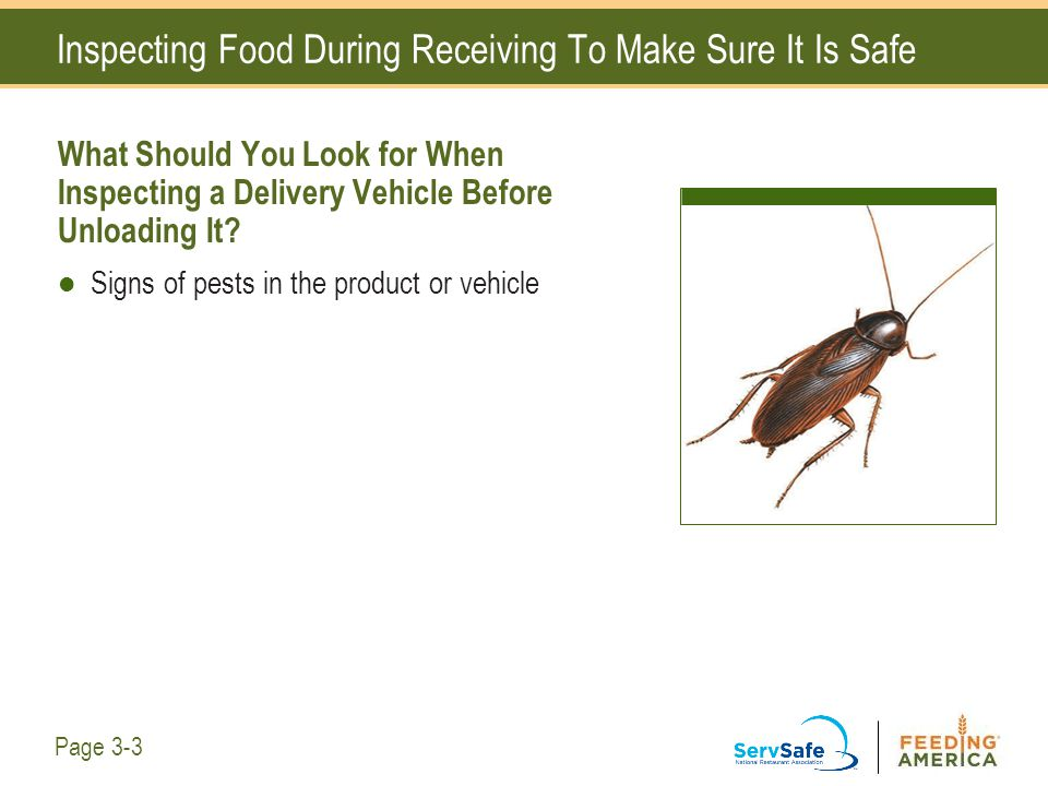 Inspecting Food During Receiving To Make Sure It Is Safe What Should You Look for When Inspecting a Delivery Vehicle Before Unloading It? Signs of pes