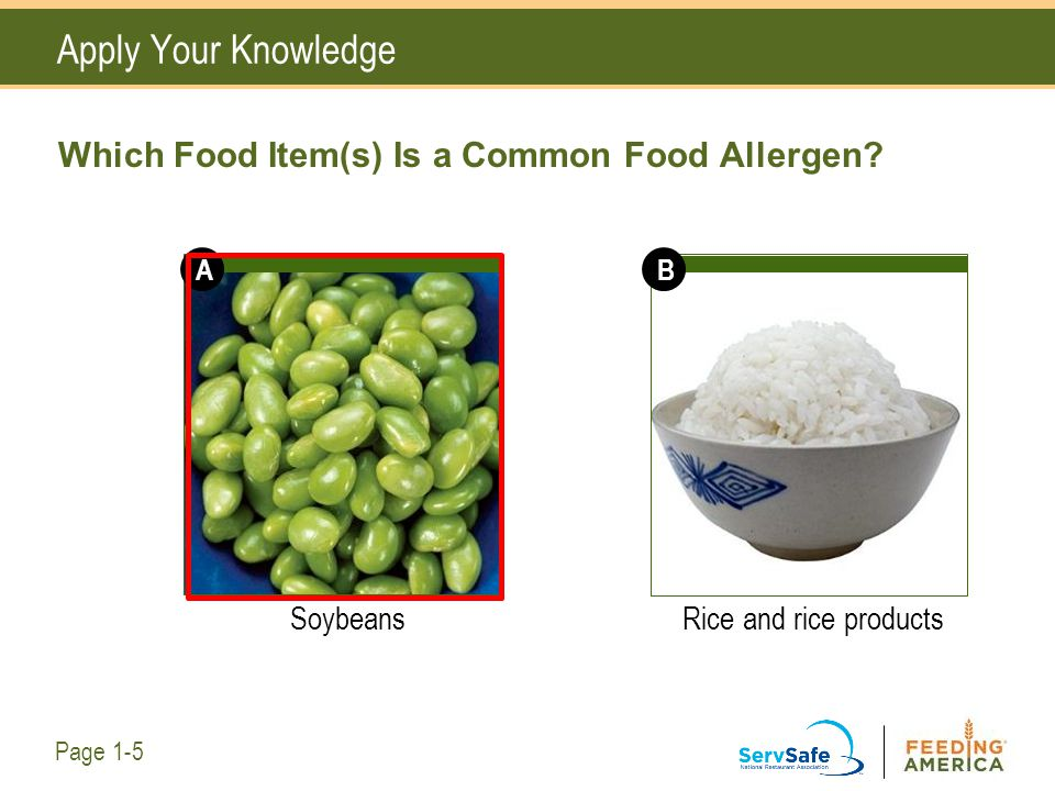 Which Food Item(s) Is a Common Food Allergen? SoybeansRice and rice products Apply Your Knowledge Page 1-5 AB