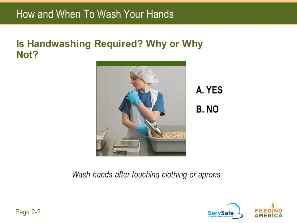 How and When To Wash Your Hands A. YES B. NO Wash hands after touching clothing or aprons Page 2-2 Is Handwashing Required? Why or Why Not?