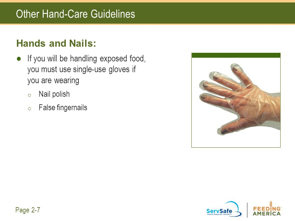 Other Hand-Care Guidelines Hands and Nails: If you will be handling exposed food, you must use single-use gloves if you are wearing o Nail polish o Fa