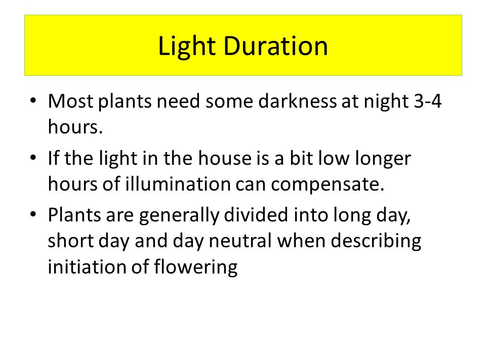 Temperature Most house plants like people temps 75 day and 65 night, most can adapt a few degrees either way.