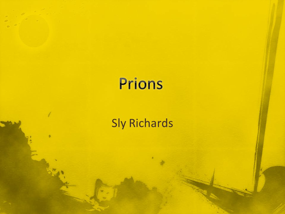 Sly Richards