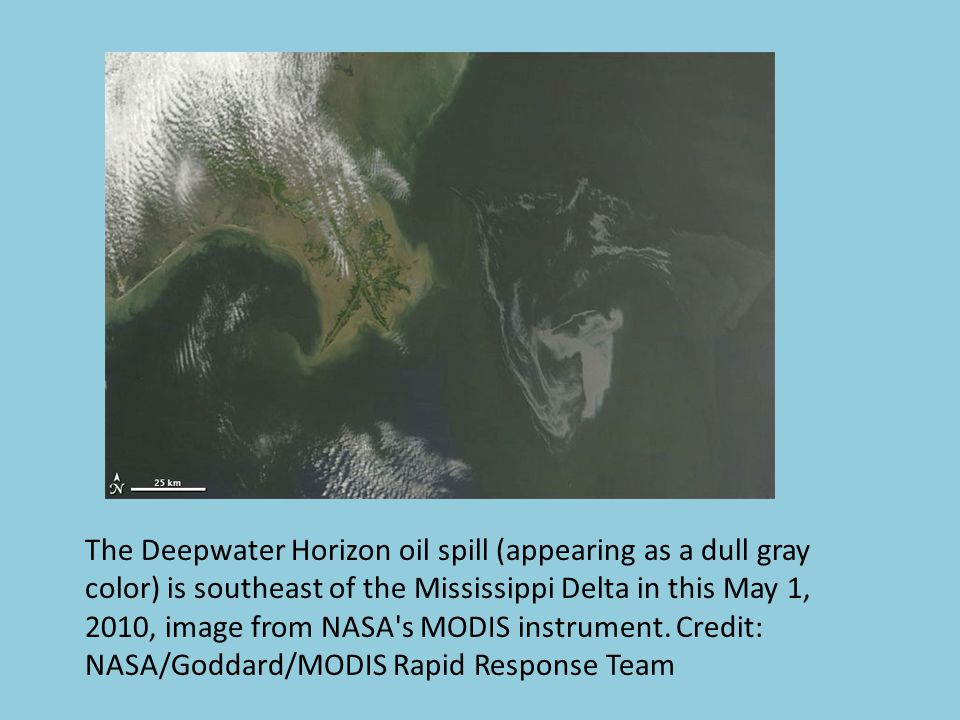 The Deepwater Horizon oil spill (appearing as a dull gray color) is southeast of the Mississippi Delta in this May 1, 2010, image from NASA s MODIS instrument.