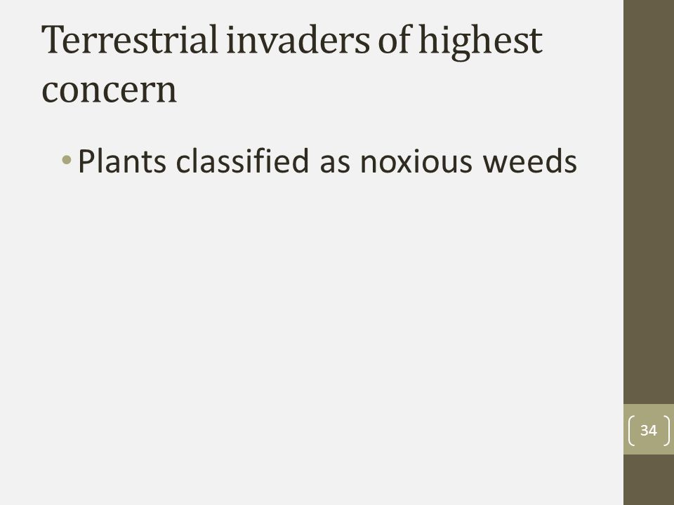 Terrestrial invaders of highest concern Plants classified as noxious weeds 34