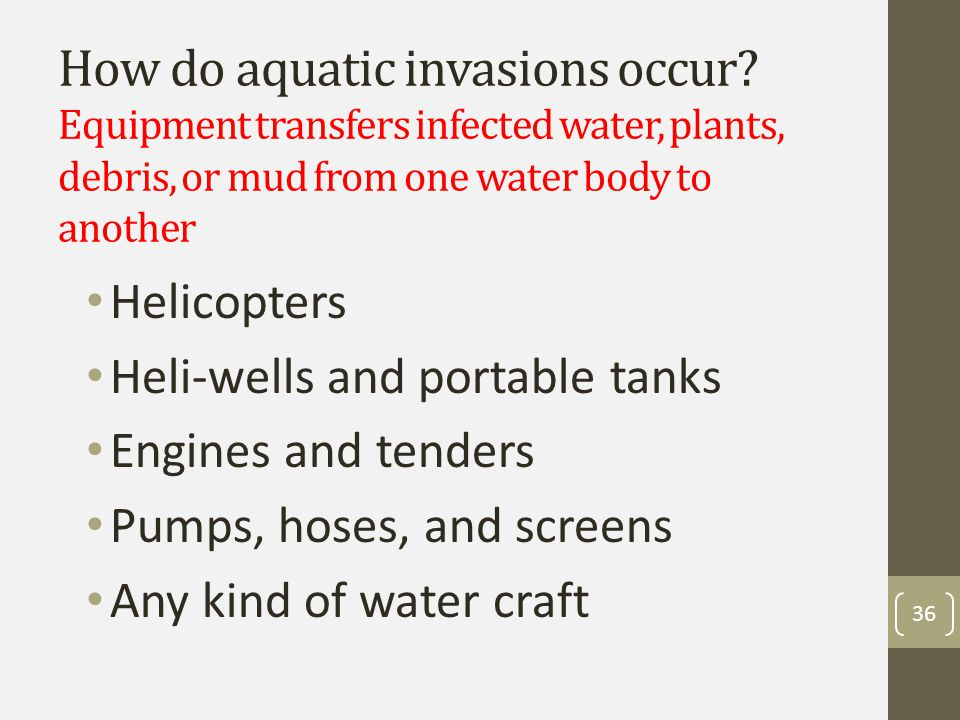 How do aquatic invasions occur.