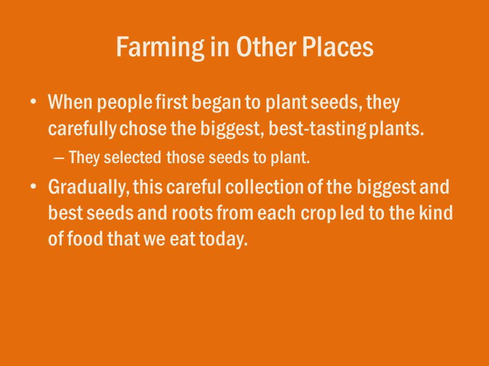 Farming in Other Places When people first began to plant seeds, they carefully chose the biggest, best-tasting plants. – They selected those seeds to