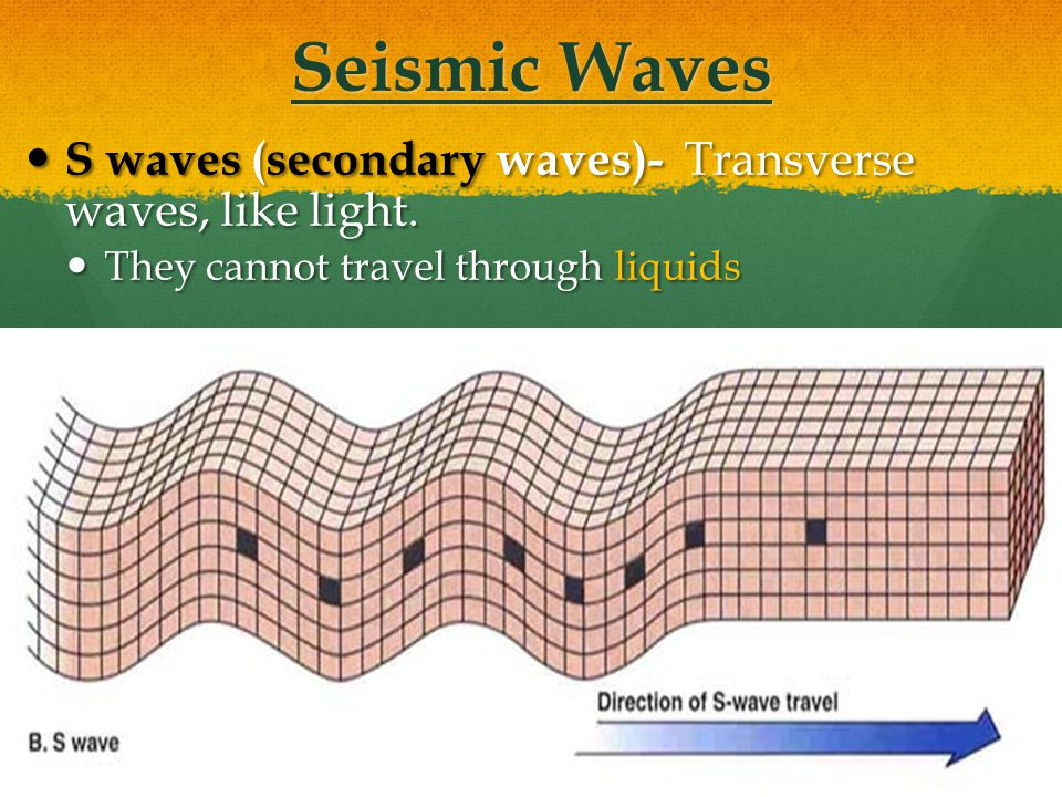 Seismic Waves S waves (secondary waves)- Transverse waves, like light.