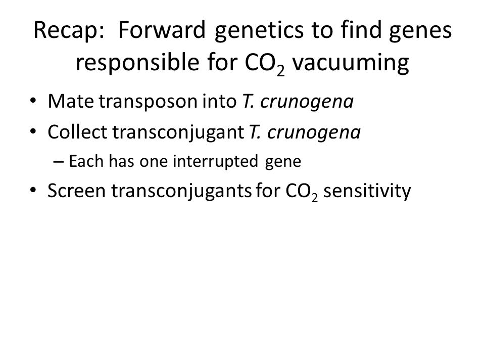 Recap: Forward genetics to find genes responsible for CO 2 vacuuming Mate transposon into T.