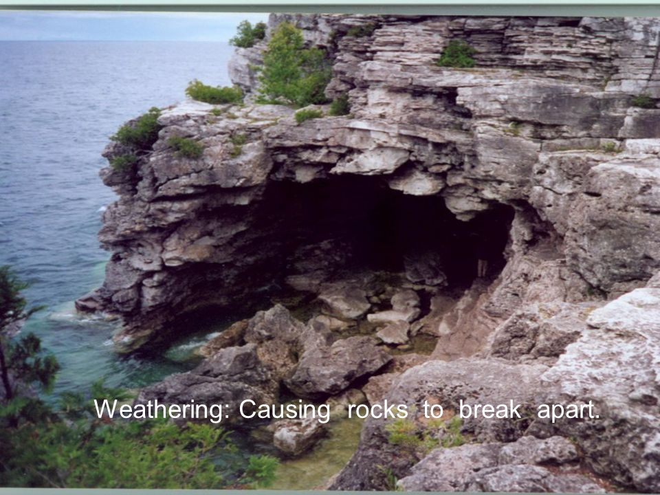 Living things can also cause weathering.A tree's roots can grow in a small crack in a rock.