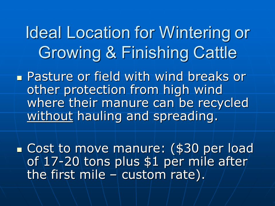 Ideal Location for Wintering or Growing & Finishing Cattle Pasture or field with wind breaks or other protection from high wind where their manure can be recycled without hauling and spreading.