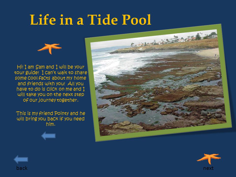 Life in a Tide Pool Hi.I am Sam and I will be your tour guide.