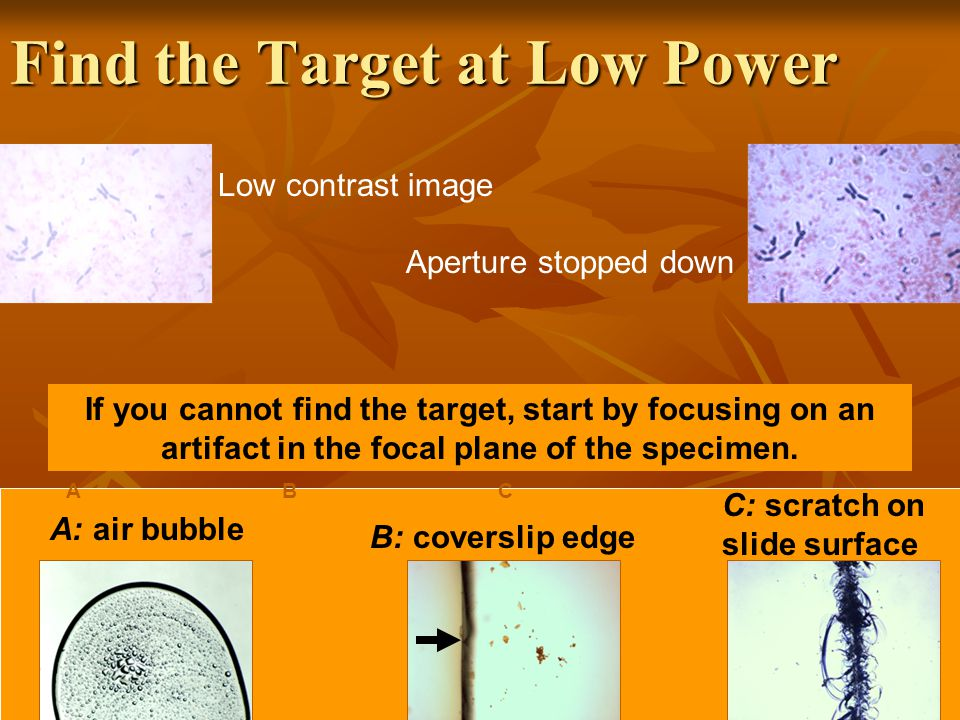 Find the Target at Low Power Low contrast image Aperture stopped down If you cannot find the target, start by focusing on an artifact in the focal plane of the specimen.