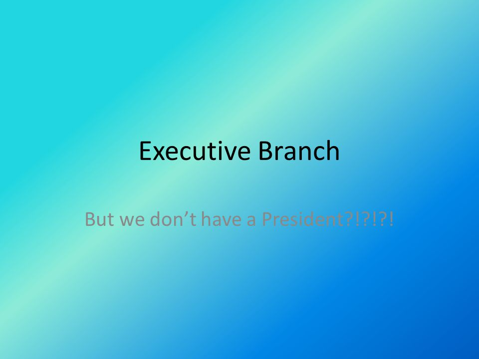 Executive Branch But we don't have a President?!?!?!