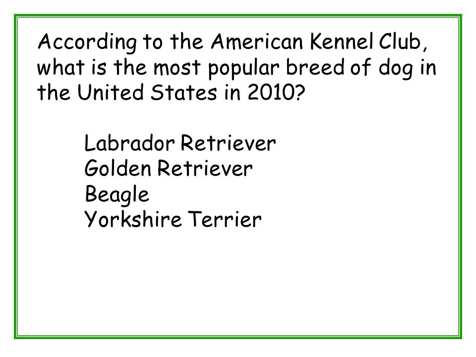 According to the American Kennel Club, what is the most popular breed of dog in the United States in 2010? Labrador Retriever Golden Retriever Beagle