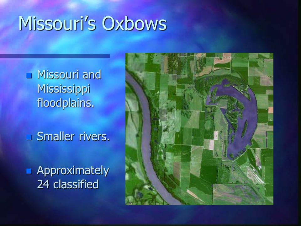 What is the water like.n n Very Shallow. – –most oxbows are less than 3 meters deep.
