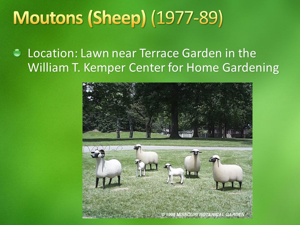Location: Lawn near Terrace Garden in the William T. Kemper Center for Home Gardening