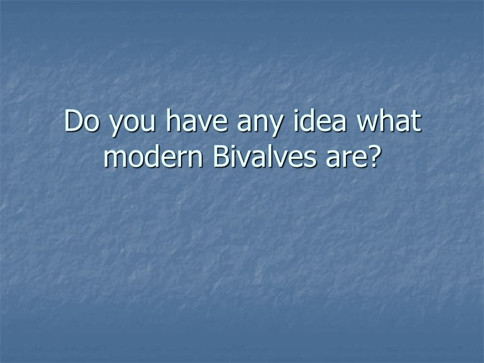 Do you have any idea what modern Bivalves are?