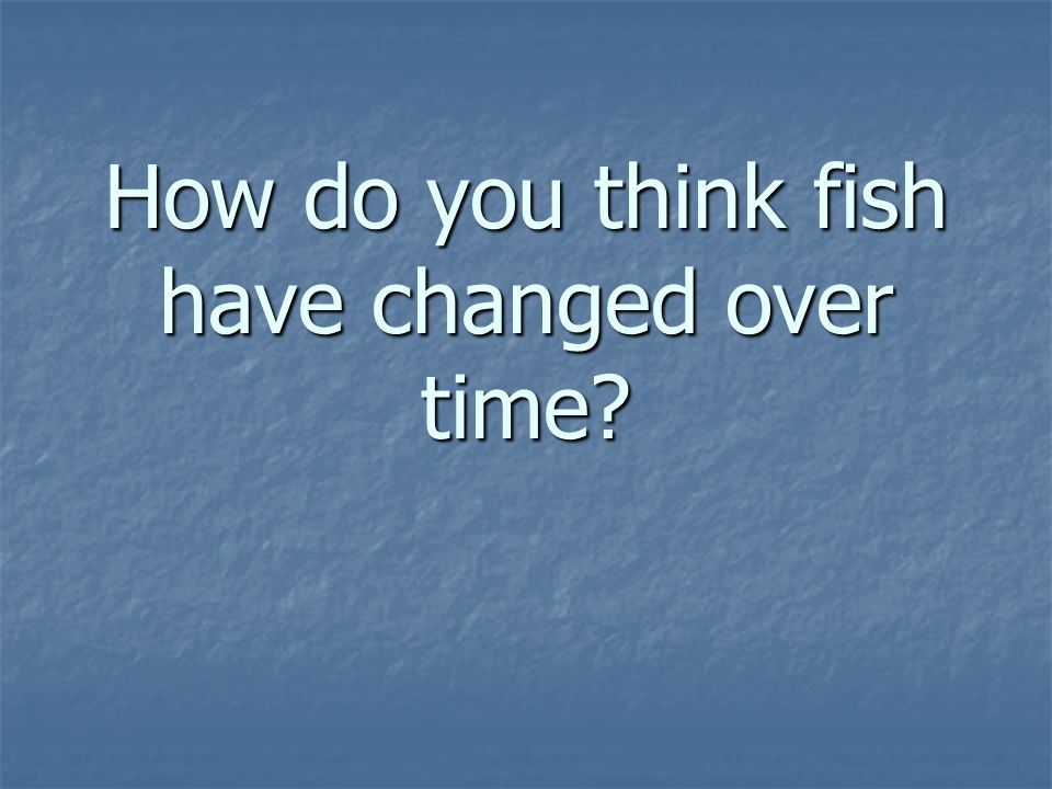 How do you think fish have changed over time