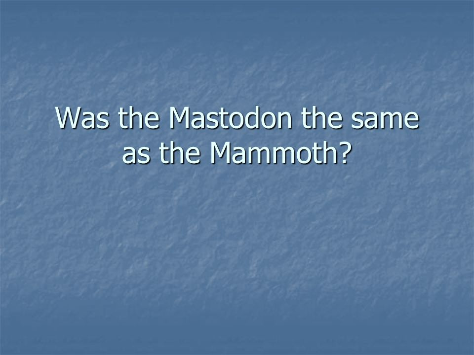 Was the Mastodon the same as the Mammoth?