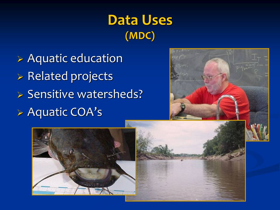 Dennis Steigerwalt of Gallatin High School ST #697 Data Uses (MDC)  Aquatic education  Related projects  Sensitive watersheds.