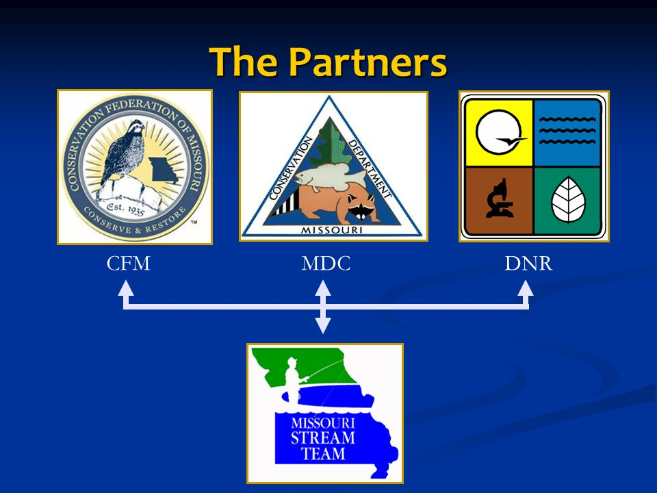 The Partners CFMMDCDNR