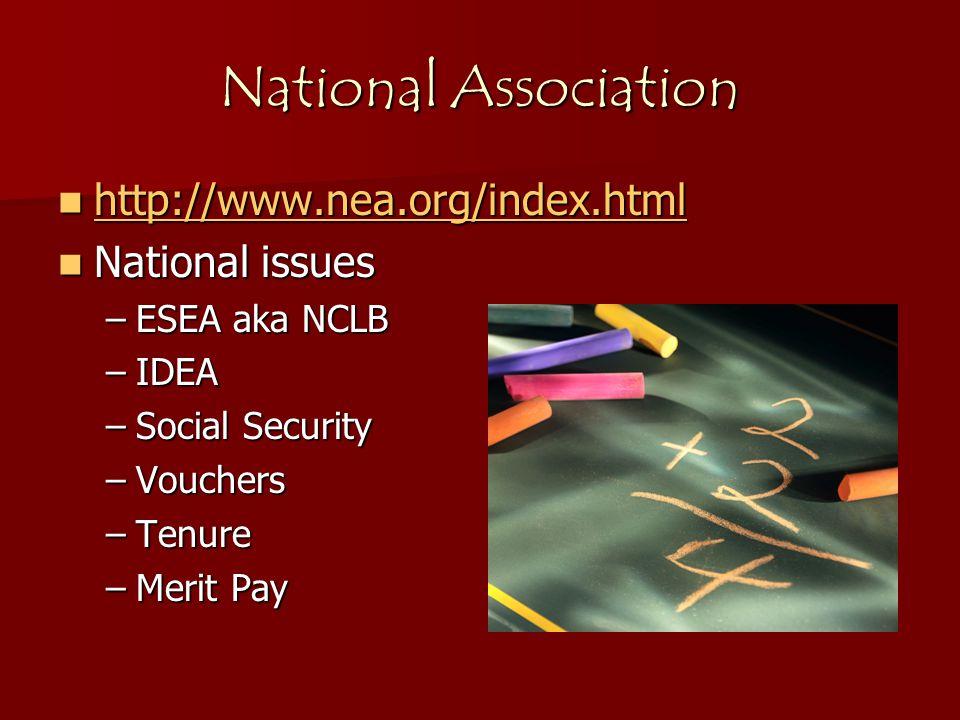 National Association http://www.nea.org/index.html http://www.nea.org/index.html http://www.nea.org/index.html National issues National issues –ESEA aka NCLB –IDEA –Social Security –Vouchers –Tenure –Merit Pay