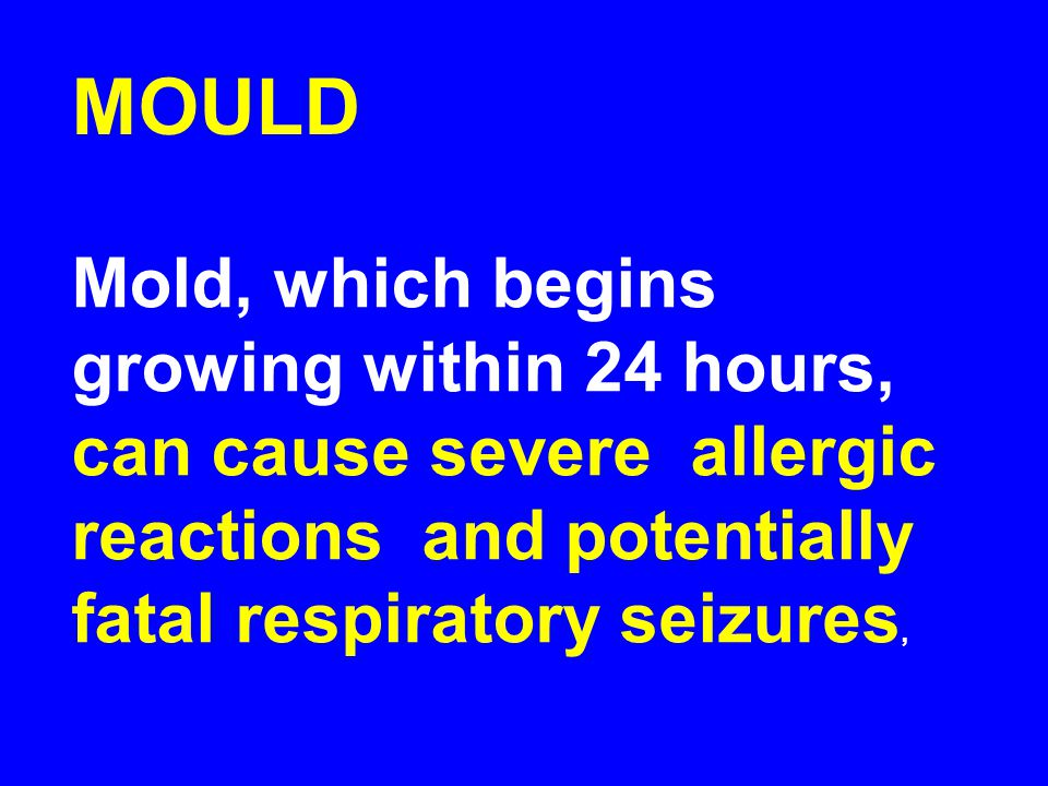 MOULD Mold, which begins growing within 24 hours, can cause severe allergic reactions and potentially fatal respiratory seizures,