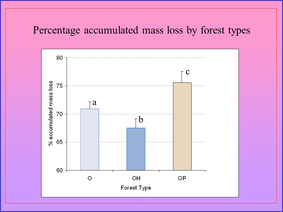 Percentage accumulated mass loss by forest types a b c