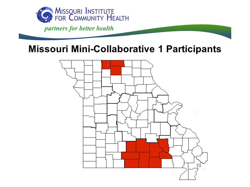 Missouri Mini-Collaborative 1 Participants