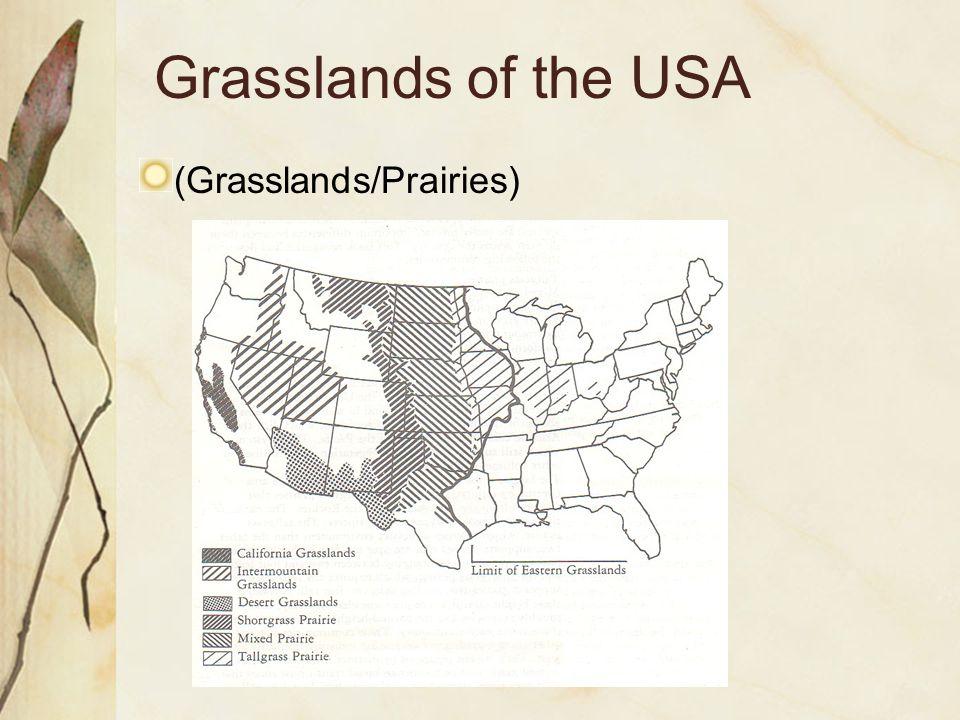 Grasslands of the USA (Grasslands/Prairies)