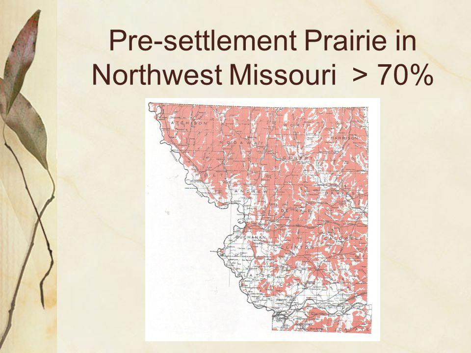 Pre-settlement Prairie in Northwest Missouri > 70%