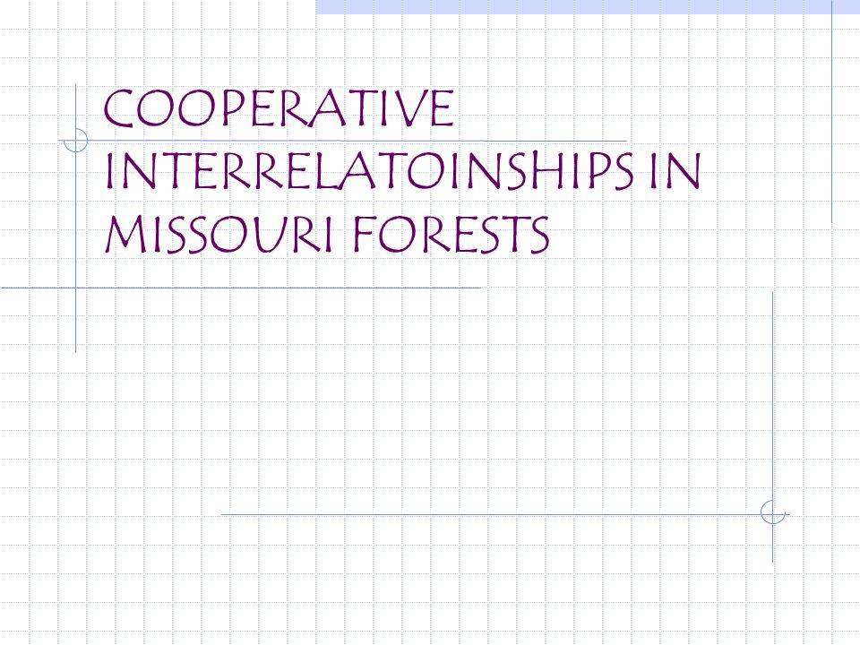 COOPERATIVE INTERRELATOINSHIPS IN MISSOURI FORESTS