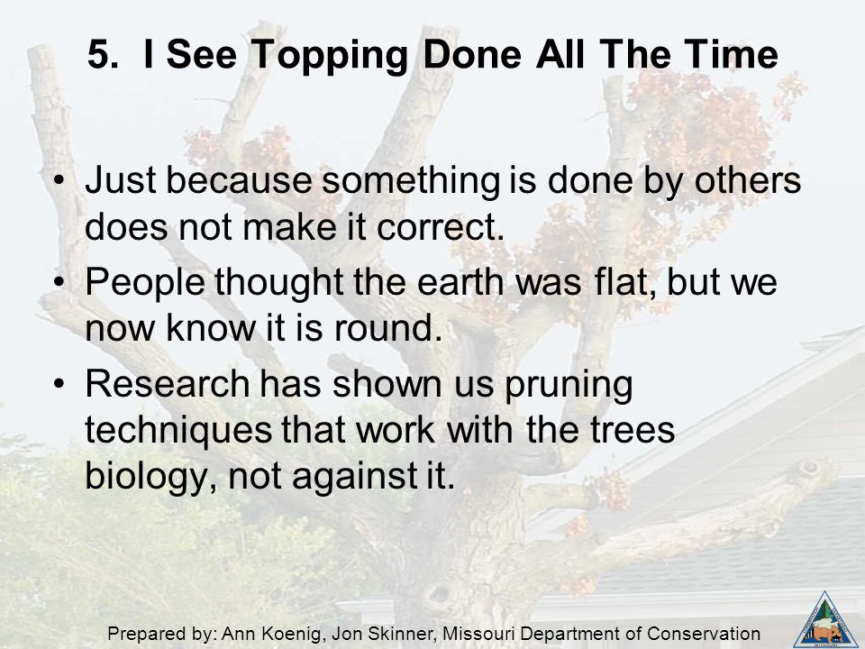 Prepared by: Ann Koenig, Jon Skinner, Missouri Department of Conservation 5. I See Topping Done All The Time Just because something is done by others