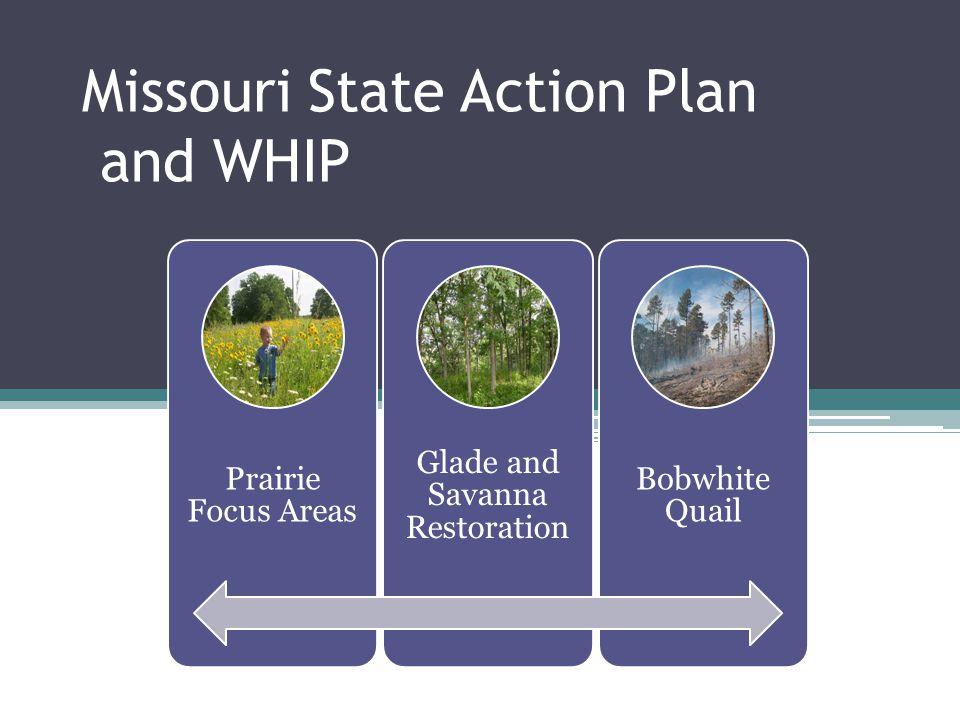 WREP $500,000 Match to State Targets 3 Major Wetland COAs Levee downgrades, hydrology restoration, vegetation restoration