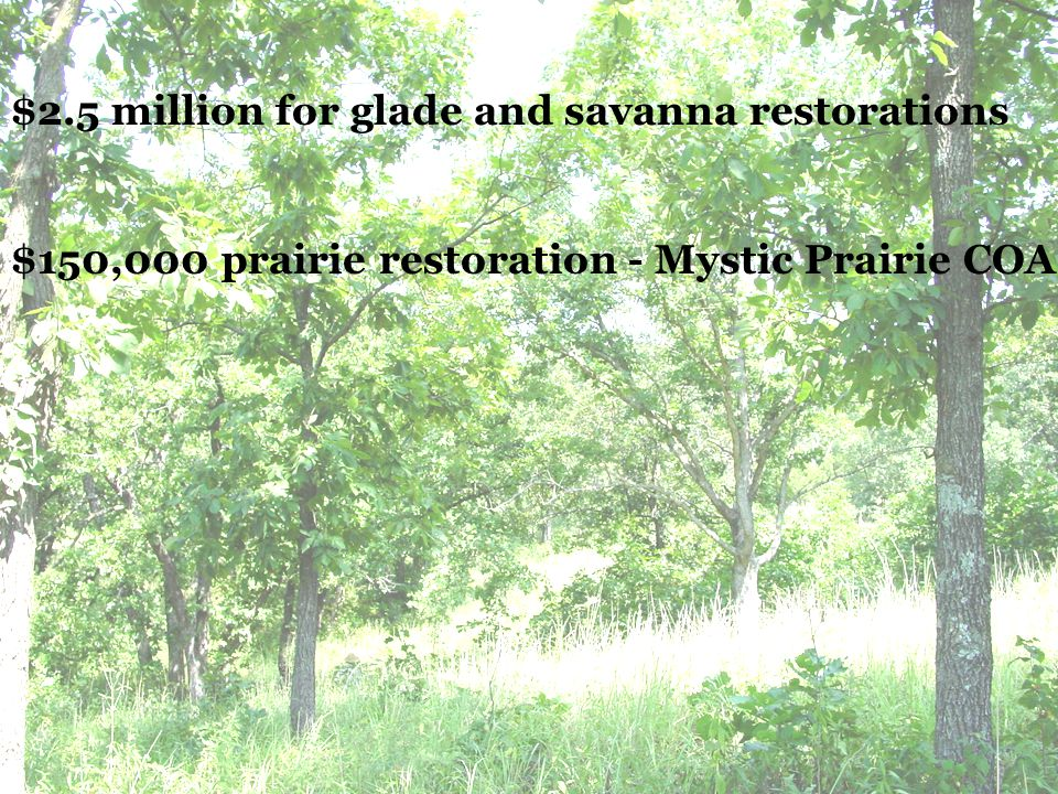 GRP Only about 100,000 acres of native prairie left in Missouri (out of 15 million acres in presettlement times) 10,000 acres native prairie protected through easement or long-term agreement