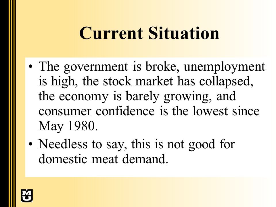 Current Situation The government is broke, unemployment is high, the stock market has collapsed, the economy is barely growing, and consumer confidence is the lowest since May 1980.