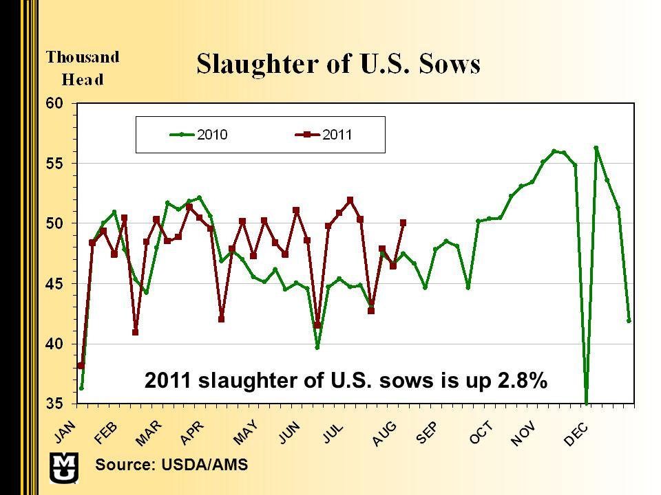 2011 slaughter of U.S. sows is up 2.8% Source: USDA/AMS
