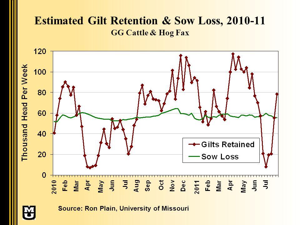 Estimated Gilt Retention & Sow Loss, 2010-11 GG Cattle & Hog Fax Source: Ron Plain, University of Missouri