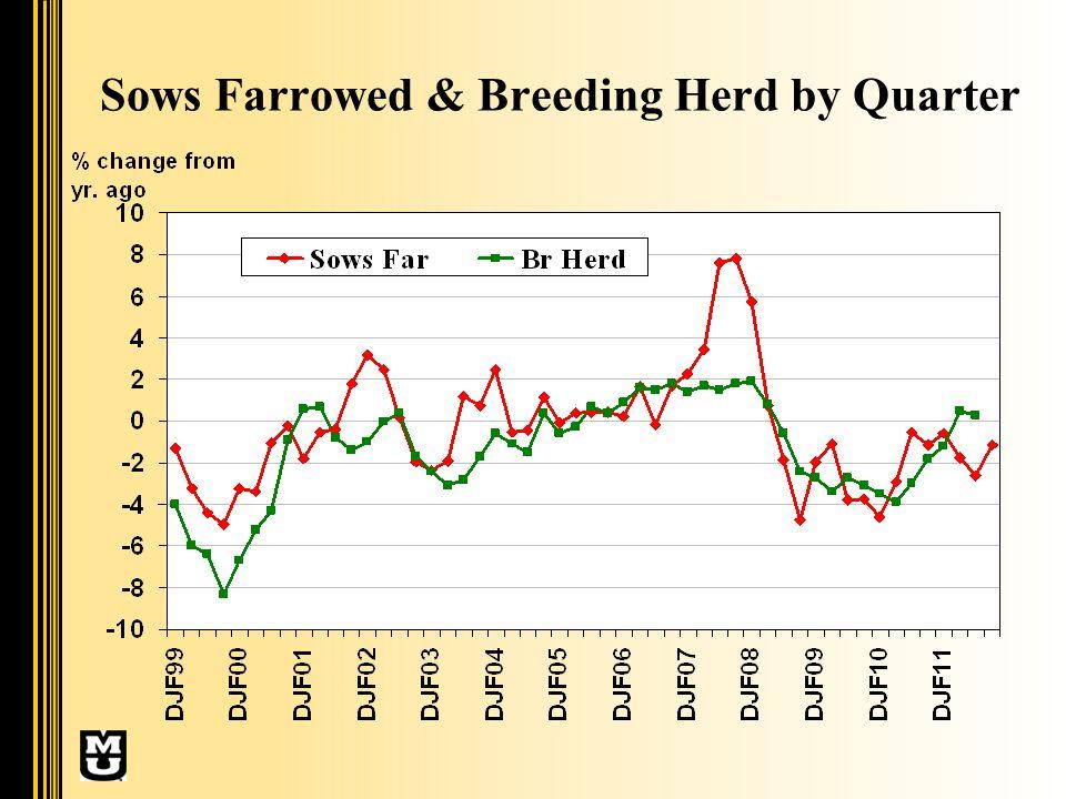 Sows Farrowed & Breeding Herd by Quarter