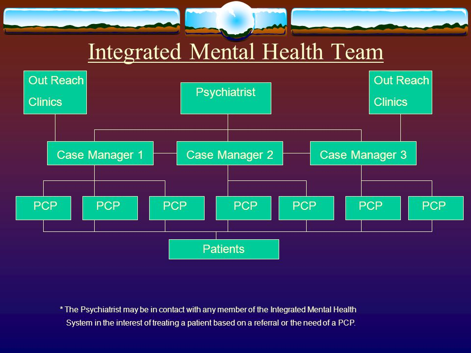 Integrated Mental Health Team Psychiatrist Case Manager 1Case Manager 3Case Manager 2 Out Reach Clinics Out Reach Clinics PCP Patients * The Psychiatrist may be in contact with any member of the Integrated Mental Health System in the interest of treating a patient based on a referral or the need of a PCP.