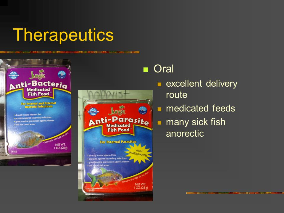 Therapeutics Oral tube medications