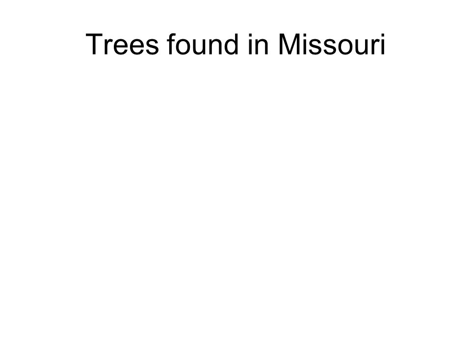 Trees found in Missouri