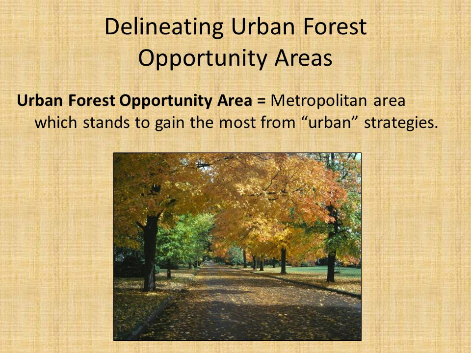 Delineating Urban Forest Opportunity Areas Urban Forest Opportunity Area = Metropolitan area which stands to gain the most from urban strategies.