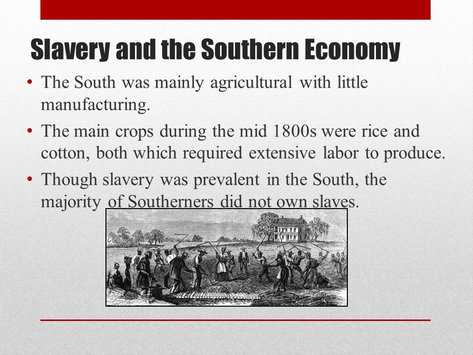 Slavery and the Southern Economy The South was mainly agricultural with little manufacturing. The main crops during the mid 1800s were rice and cotton