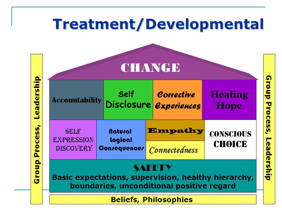A Broader Vision – Moving from Programs to Systems Layers of support for youth and families, building social capital Comprehensive wraparound services across agencies and systems Youth and family-driven services (e.g.