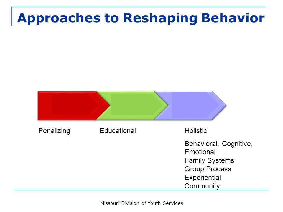Reshaping Behavior: Completing the Puzzle Internalized Change Compliance Conformity/ Submission PunitiveBehavioral/Cognitive Educational Integrated TX Behavioral, Cognitive, Emotional, Family Systems, Youth Development, and Community Integration Negative Control Loop Change Process APPROACH IMPACT