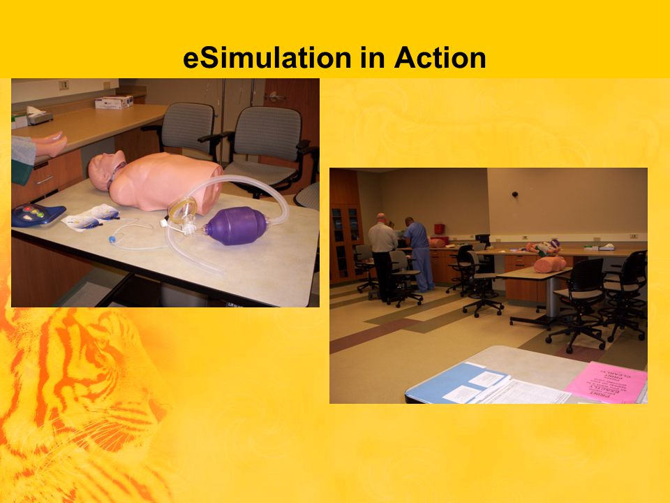 eSimulation in Action pictures