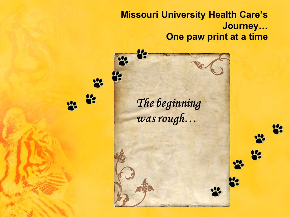 Missouri University Health Care's Journey… One paw print at a time The beginning was rough…