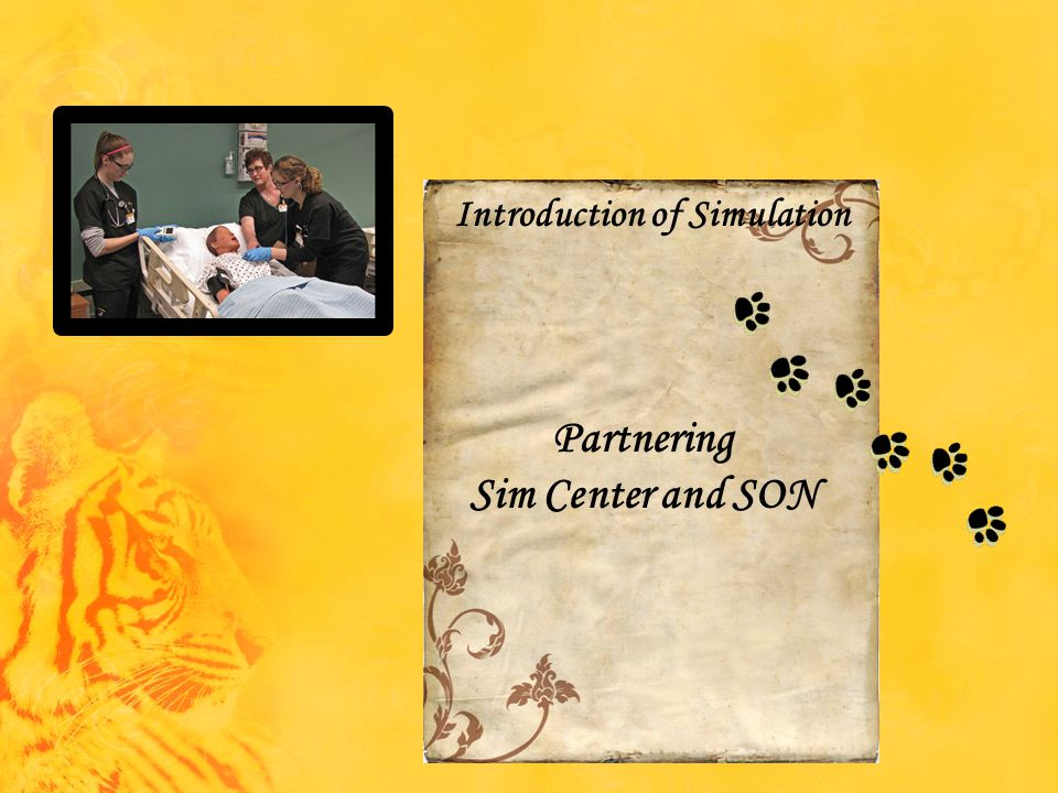 Partnering Sim Center and SON