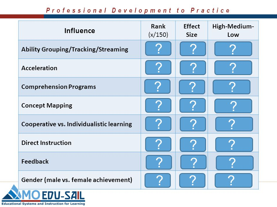 Professional Development to Practice Make an Educated Guess